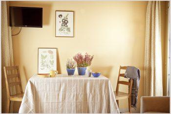 gerani-tavolo-soggiorno